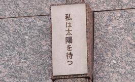 thumb_geshi